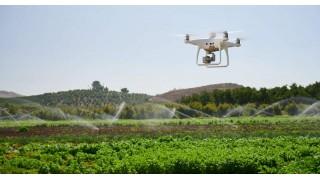 Как селькохозяйственные дроны могут помочь в сельском хозяйстве?