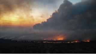 Чернобыль: Массовый лесной пожар был потушен с помощью беспилотников DJI